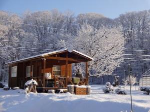 朝起きると、我が家の桜木の枝に雪が積もり、 真っ白くなってます!