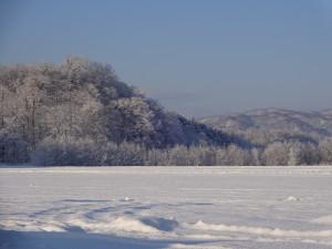 枝に雪が積もることで山も真っ白になります♪