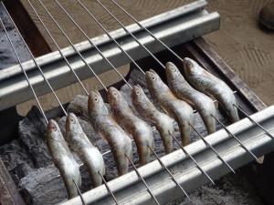 これは川魚の「ヤマメ」です! これを塩焼きで♪
