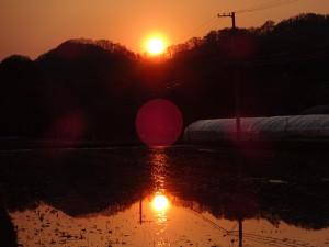 ある日の夕焼け。 いや~、綺麗ですね!