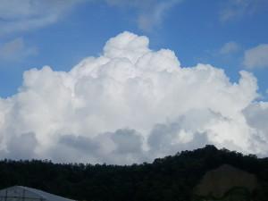 どんどん大きくなる入道雲。 いや~、夏の空ですね~♪
