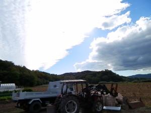 ちょっと変わった雲