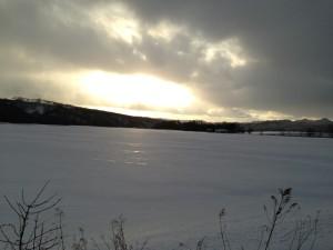 あまりの寒さに外に出たくなくなりますが。。。、 キラキラ光る雪原や白く凍った木々を見たくて 外に出たくなっちゃうんです。。。(僕はね)