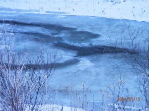 特に寒さが厳しい朝は川から湯気が出るという 謎の現象がおきます(笑) たぶん、 うちの川の水の方が温かいからなのか。。。