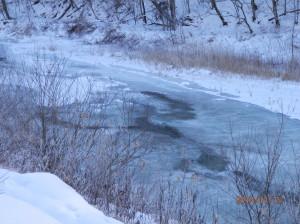 冬になるとうちの川は凍ってしまいます。。。。 (うちの近くを流れる川=うちの川)