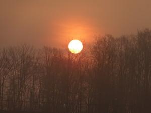 綺麗な夕日。なぜか見入ってしまいます。