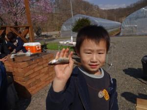 近藤さんのお孫さんと姪っ子はウチの川で 魚釣りに行きました♪30分くらいでイワナやヤマメ など20匹を釣り上げました!!良い筋の持ち主です(笑)
