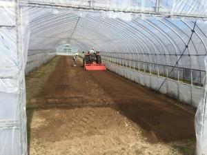 お米の苗を育て終わったハウスは トラクターで一度耕します。