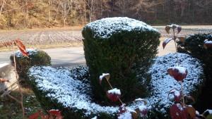 ~うっすらと雪が積もりました~