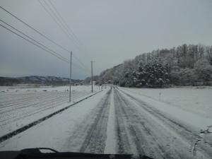 ~雪が降って一気に冬景色に~