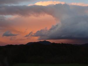その「竜の巣」に夕日が当たり、 オレンジ色に染まりました♪