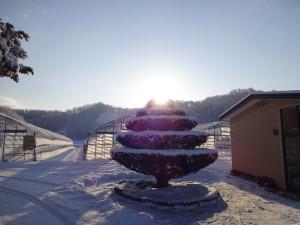 今年の冬も雪は少ないかな~って思っていたら、 2月にドサッと積もりました!